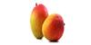 Mango 100x50 Easy Prep Gezahnter Obst /Gemüseschäler 48102
